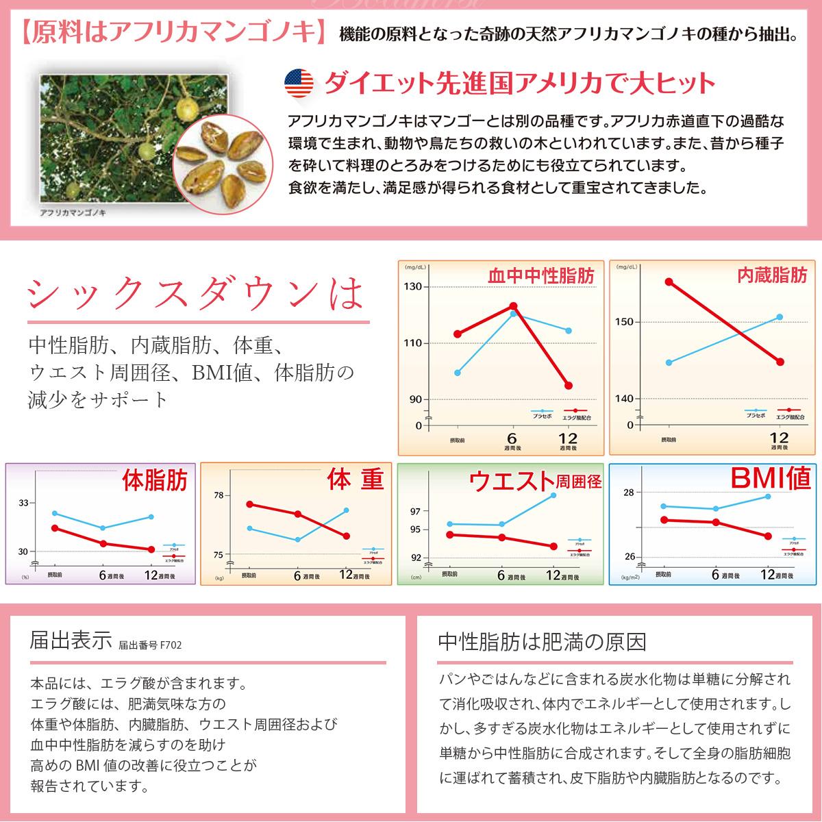 「新発売 機能性表示食品」ダイエット サプリ SIX DOWN シックスダウン 30日分×2箱セット