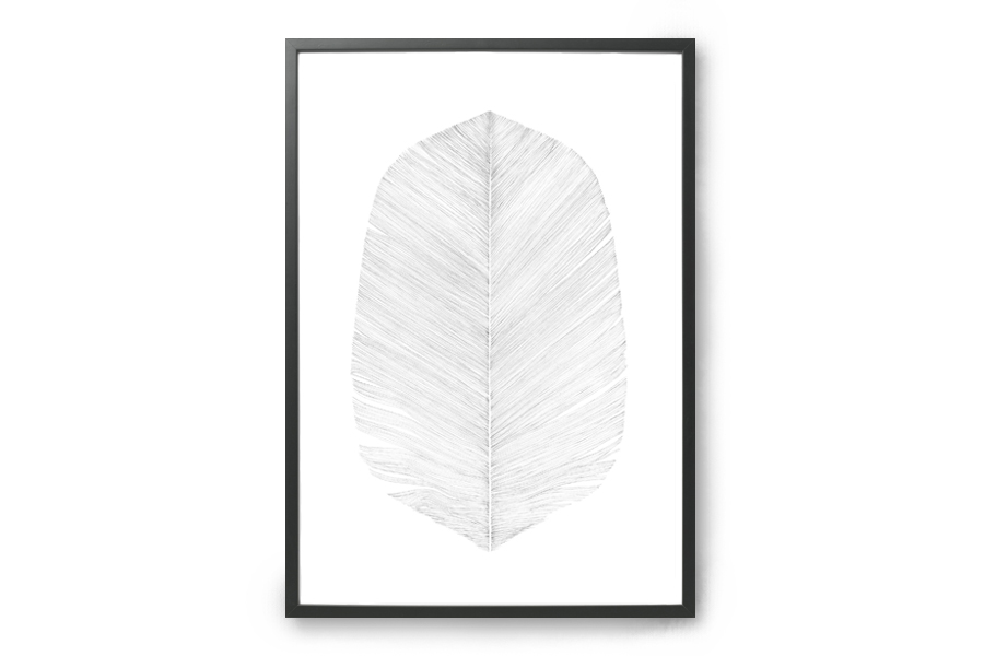 Magdalena Tyboni Design ポスター/アートプリント 30 x 40 cm WHITE FEATHERS