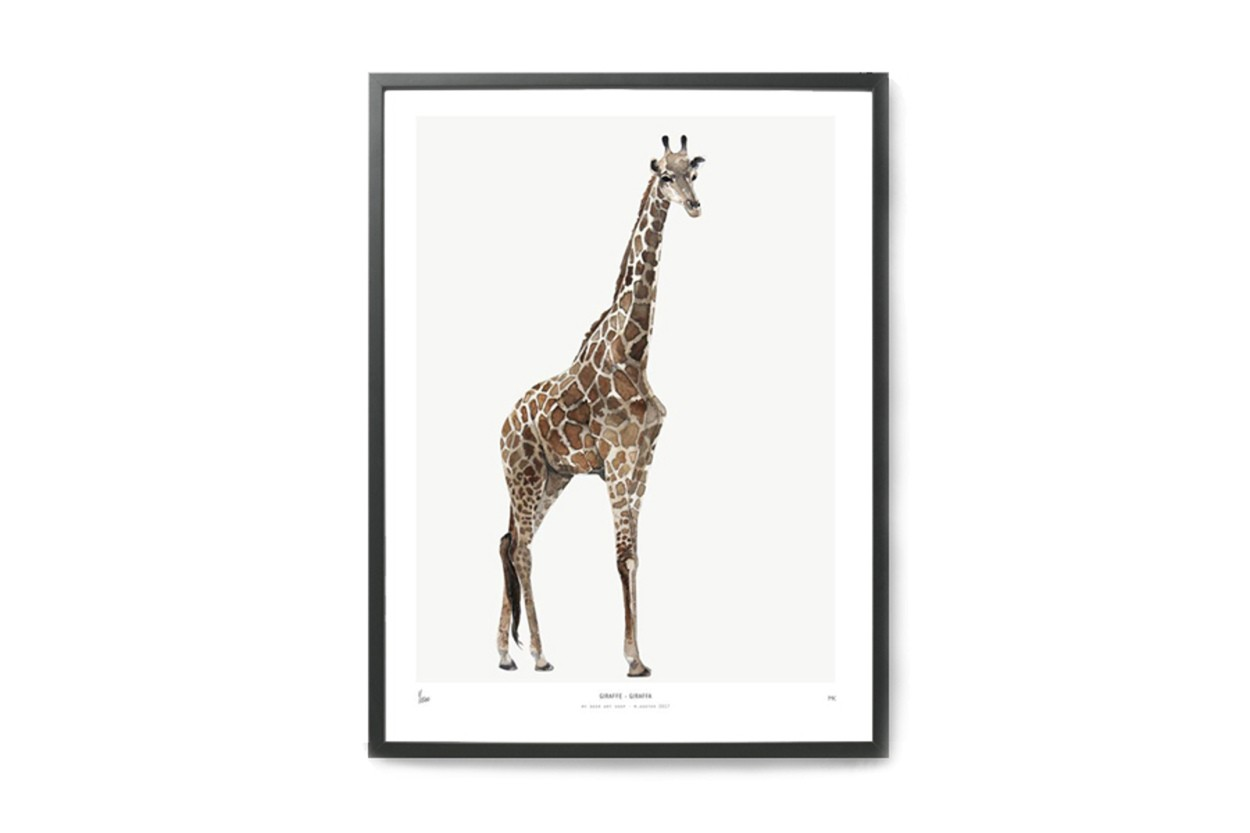 MY DEER ART SHOP ポスター/アートプリント 30×40cm INTO THE WILD / Giraffe