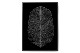 Magdalena Tyboni Design ポスター/アートプリント 50 x 70 cm BLACK FEATHER