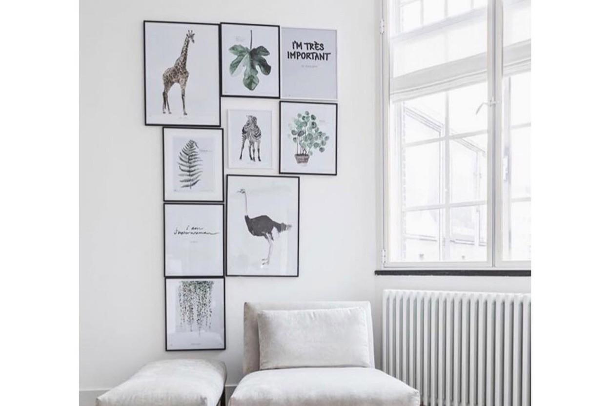 MY DEER ART SHOP ポスター/アートプリント 50×70cm INTO THE WILD / Giraffe