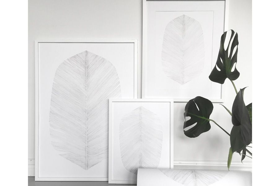 Magdalena Tyboni Design ポスター/アートプリント 50 x 70 cm WHITE FEATHERS
