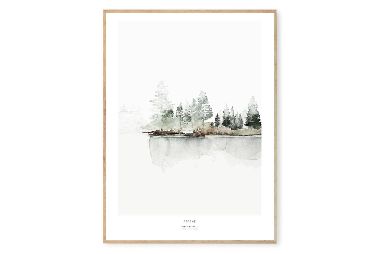 MY DEER ART SHOP ポスター/アートプリント 50×70cm Botanics / Serene (Limited edition #250)