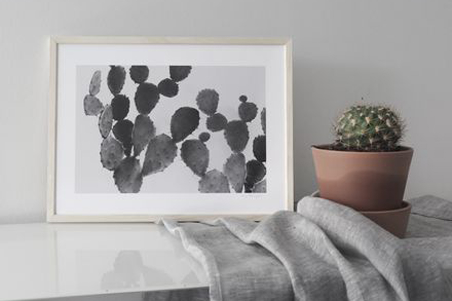 Magdalena Tyboni Design ポスター/アートプリント 50 x 70 cm CACTUS
