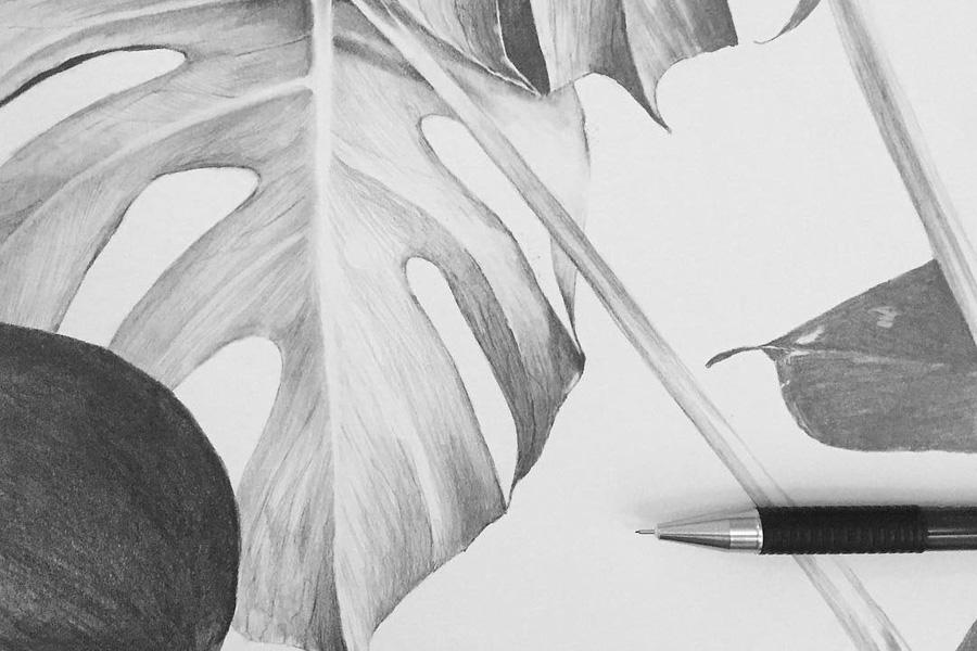 Magdalena Tyboni Design ポスター/アートプリント 30 x 40 cm MONSTERA