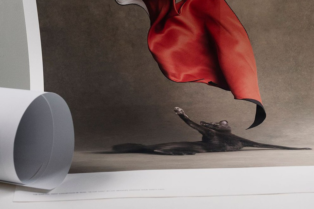 ALIUM × Kinfolk ポスター/アートプリント 50×70cm Le Chat Chic