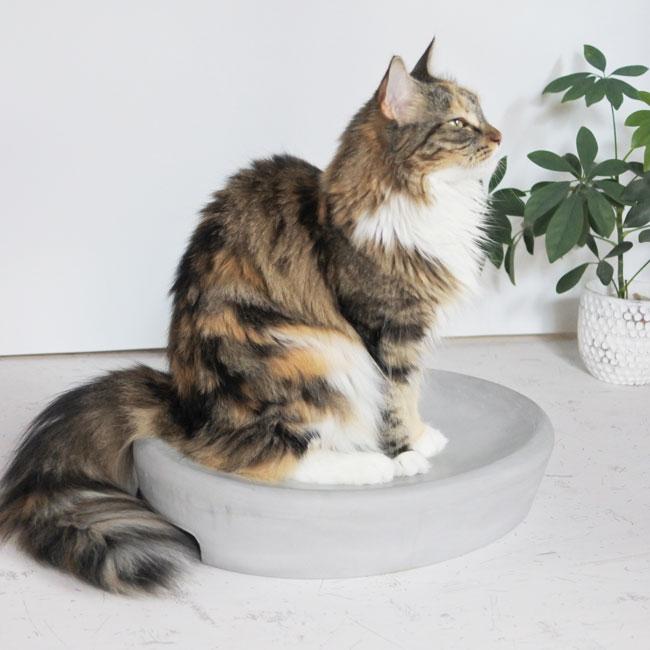 【ORIGINAL】珪藻土Cat bed_____夏にひんやり快適な珪藻土ペットベッド