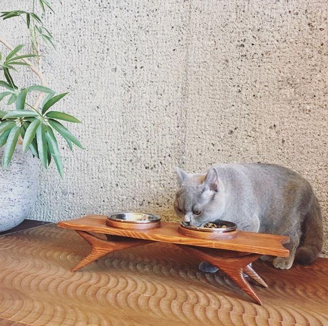 【ハンドメイド / 木製】FOOD STAND #001 / ペット用フードスタンド(made in Japan) 受注生産