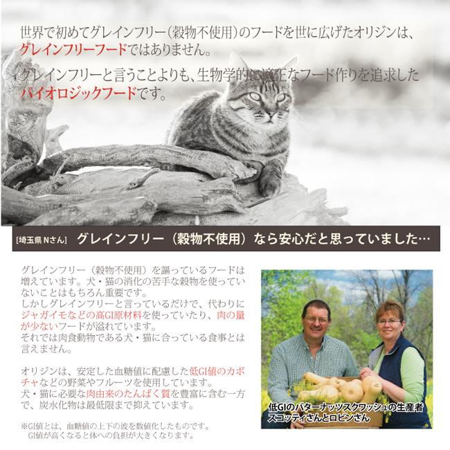 【Orijen】Cat&Kitten 1.8kg/オリジン キャット&キティ