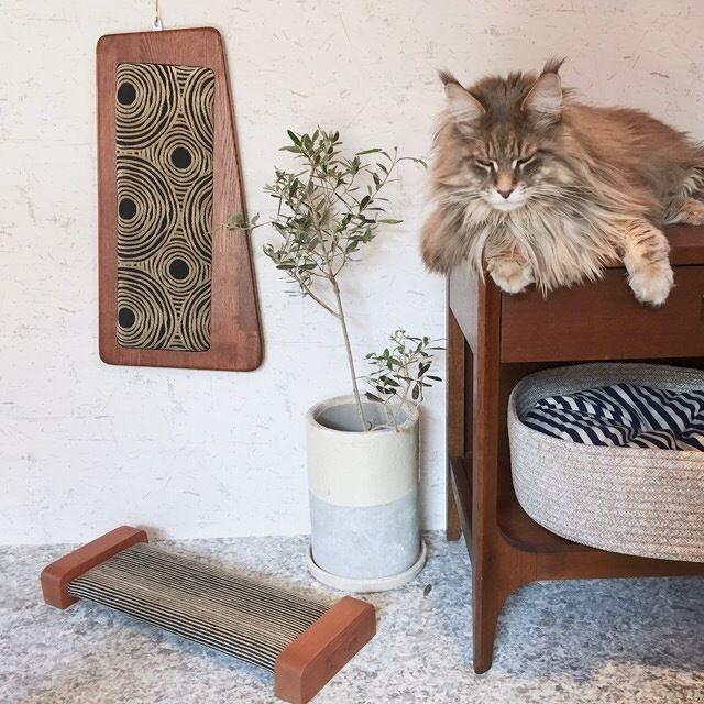 【 ORIGINAL Cat Scrather-Board Midcentury】爪とぎボード交換