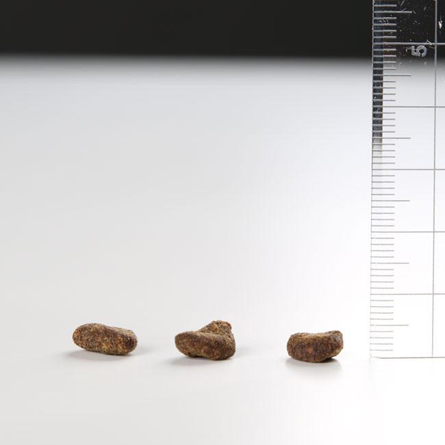 【Orijen】Fit&Trim 1.8kg/オリジン フィット&トリム