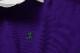 POLO RALPH LAUREN / ポロラルフローレン / ザ ビッグ コレクション ラグビーシャツ / パープル