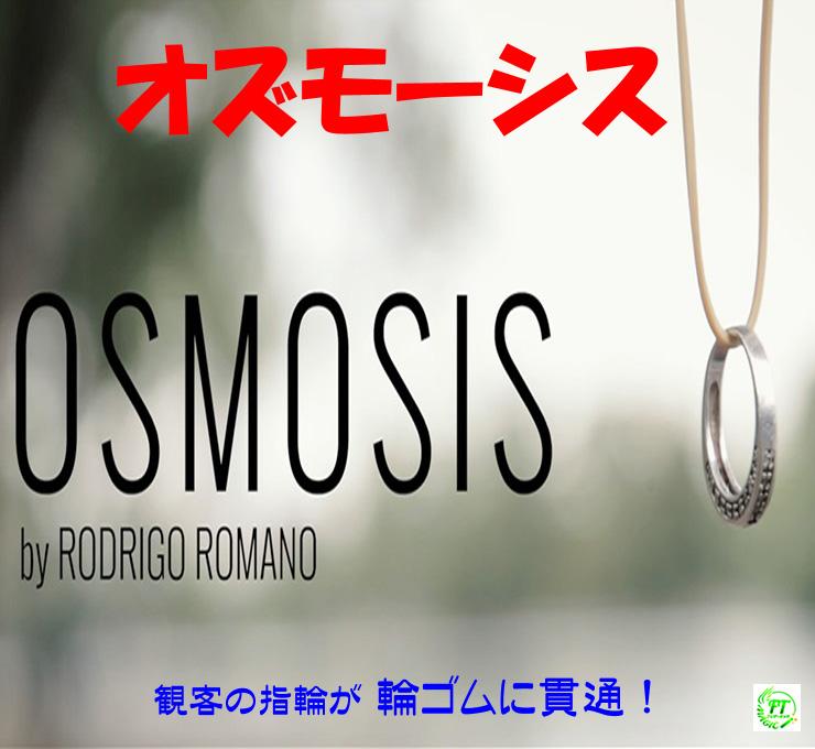 オズモーシス(輪ゴムの浸透)