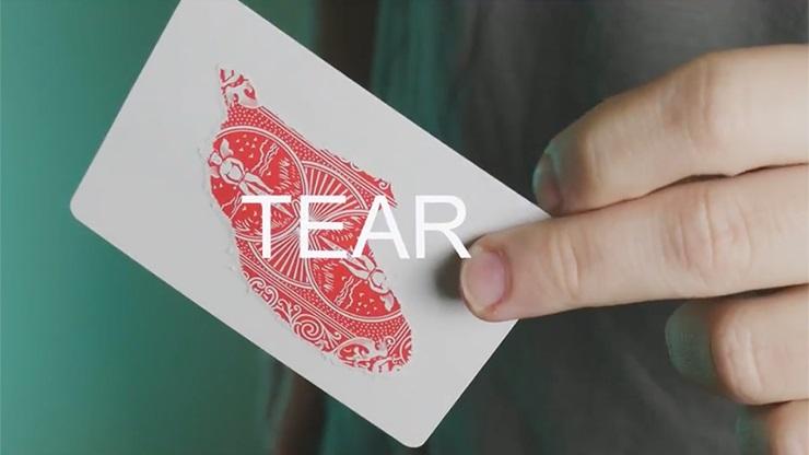 スプリットカード15枚(ギミックカード製作用4種)