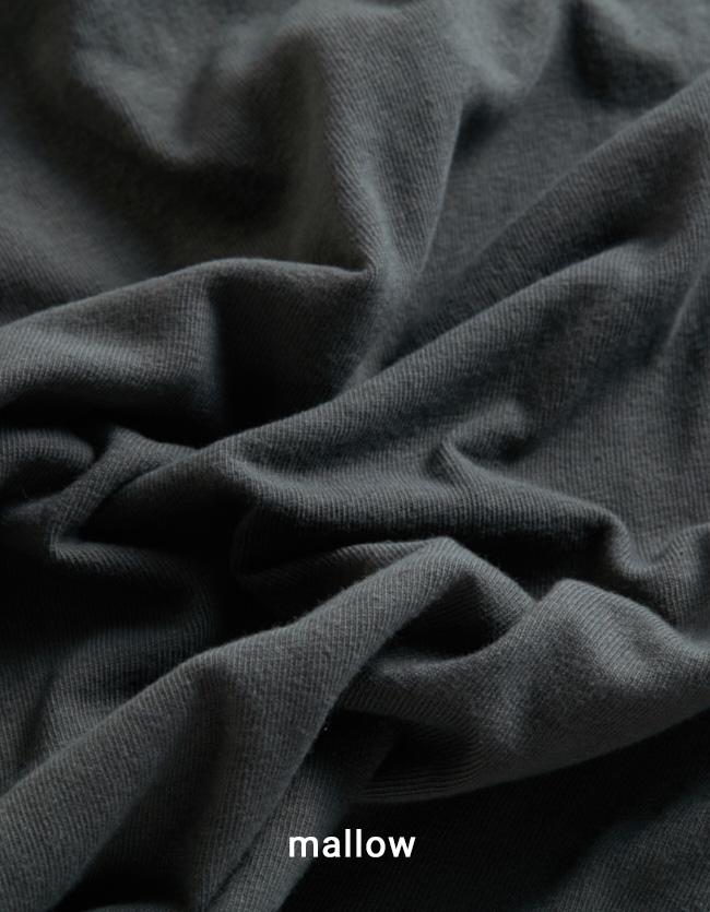 BT-DIZZ / ディズ Botanical dye