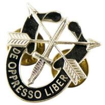 12080985-74 米陸軍SFG放出 US Army SFG De Oppresso Liber バッヂ