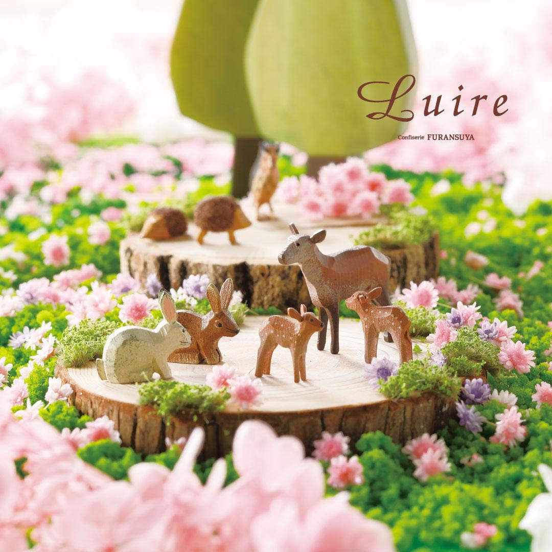 L4 ショコラ・ヴァリエS 9個入り|Luire