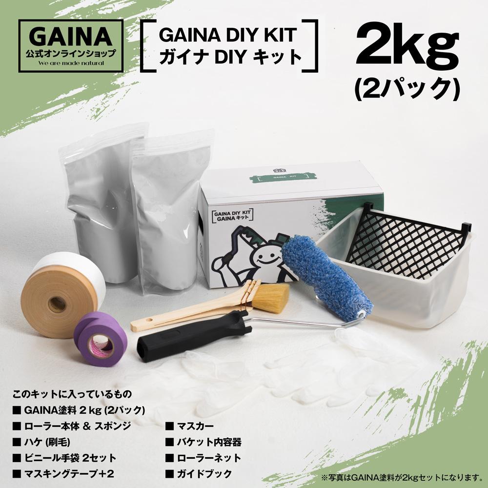 【GAINA DIY KIT】ガイナ DIY キット 2kgパック