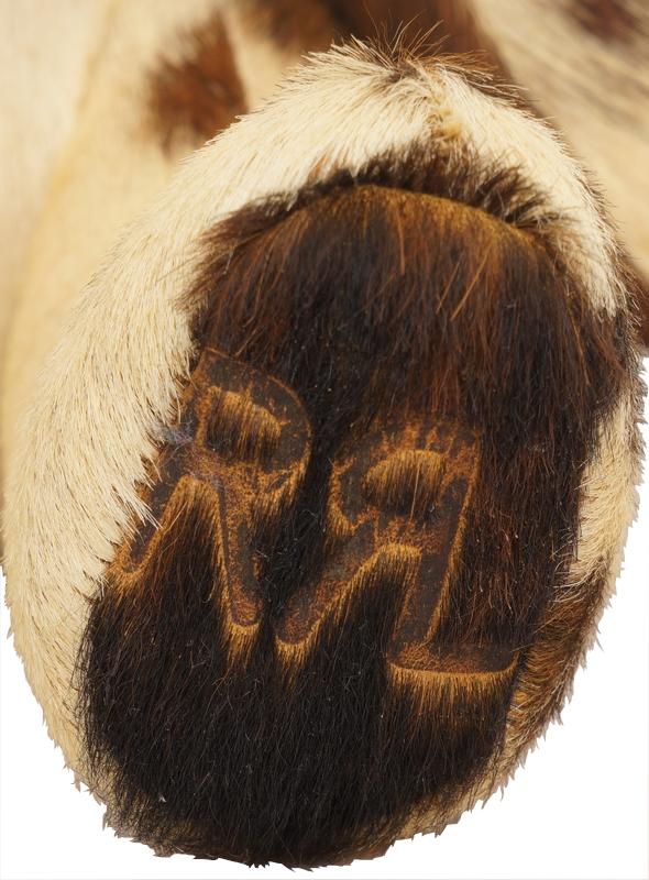 (ダブルアールエル) RRL 世界限定100個 リミテッドエディション ハラコ イタリアンレザー パッチワーク ベア No.51 Limited Edition Calf Hair Bear
