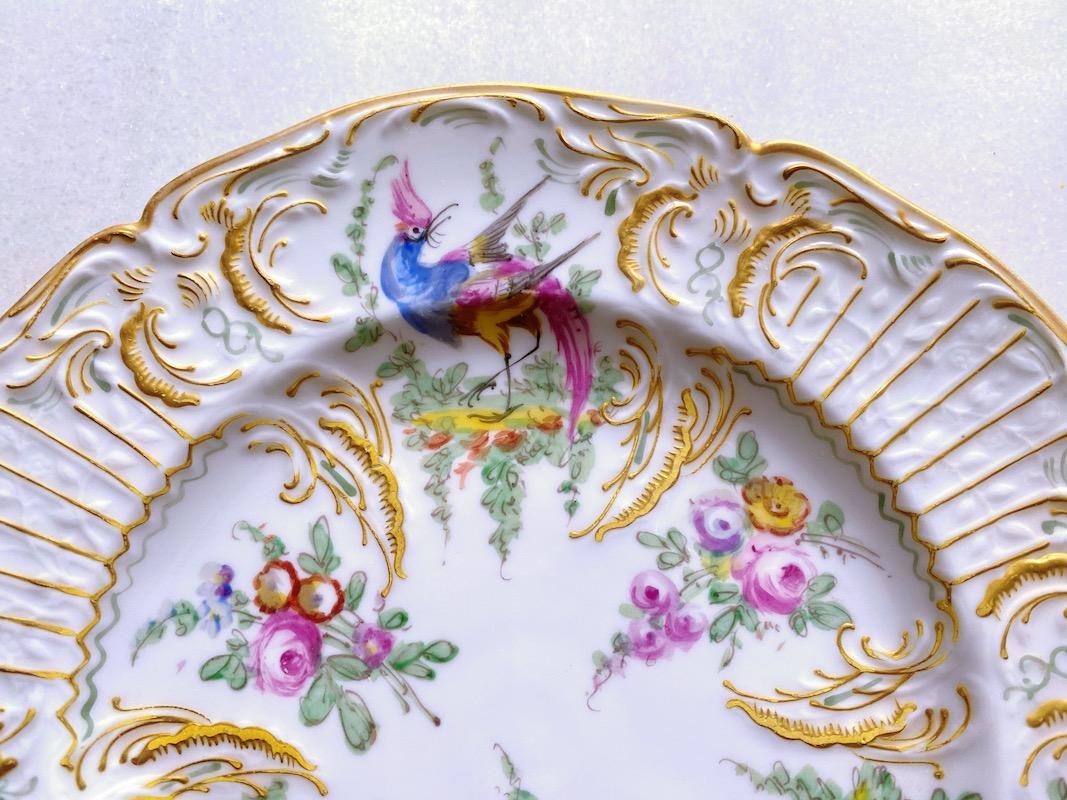 パリ窯ヴァンセンヌ エキゾチックバード#3