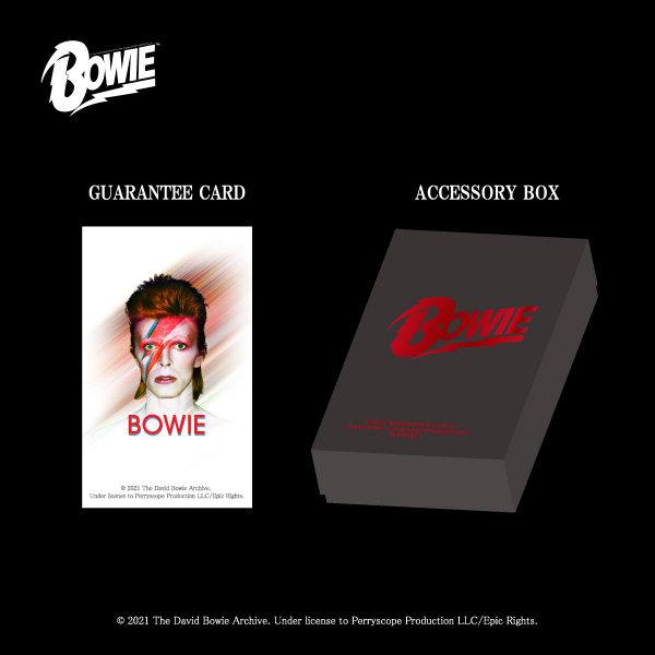 【DAVID BOWIE】Ziggy Stardust ペンダント/コラボ