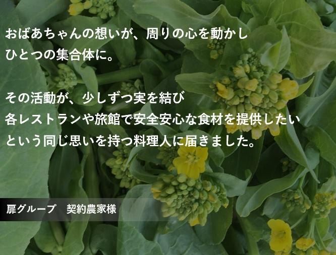 【恋する野菜】 信州採れたて新鮮野菜セット