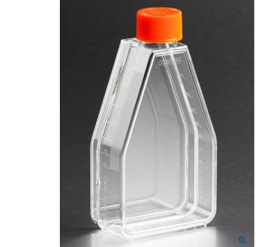 コーニング細胞培養フラスコ 75cm2