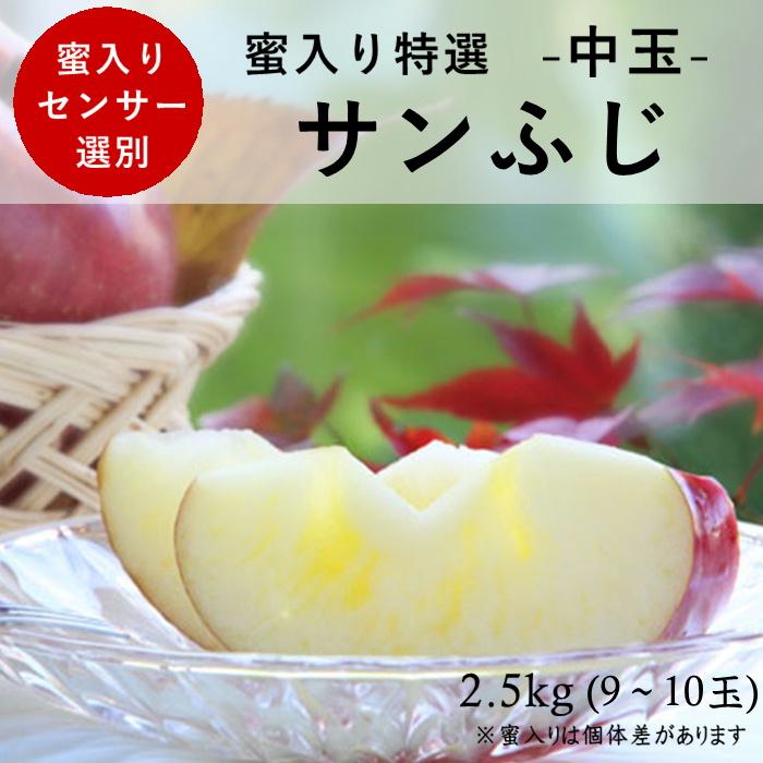 蜜入り特選【中玉】サンふじ 約2.5kg(9~10玉) S338