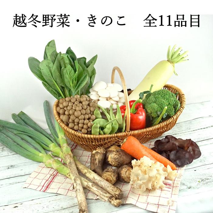 S704 霜月野菜直送便