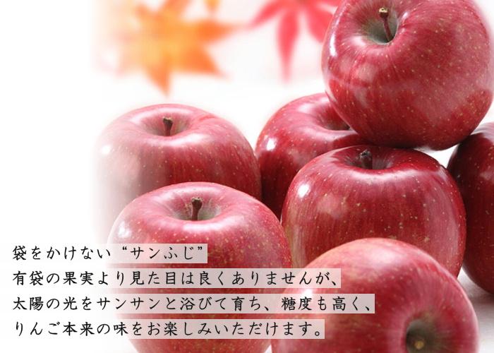 蜜入り特選【極み】サンふじ 約2.5kg(7~8玉) S339