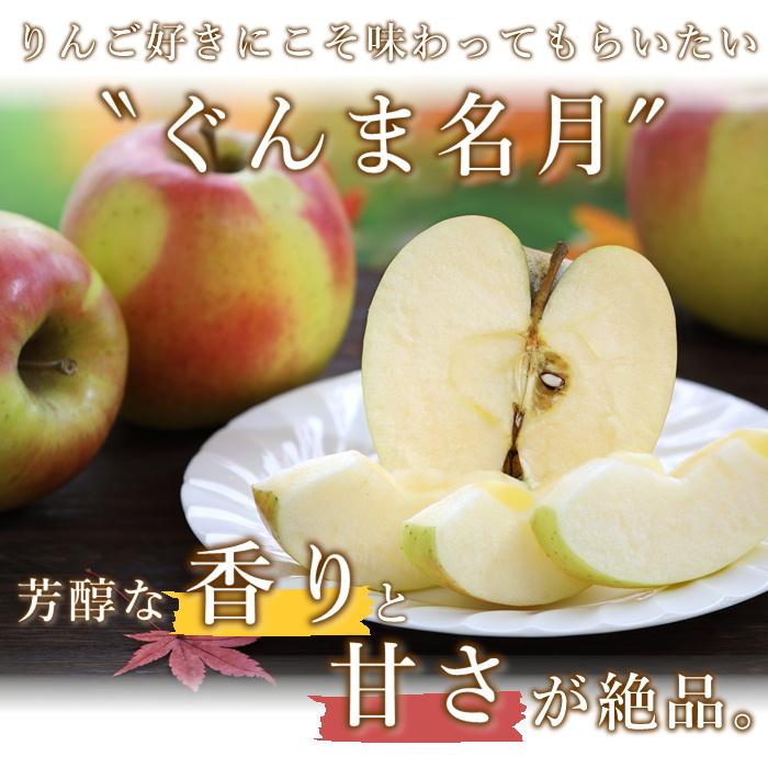 S345  りんご ぐんま名月 約5kg(14~18玉)