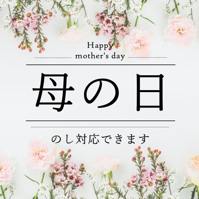 【母の日 ギフト 2021】 春の装いセット