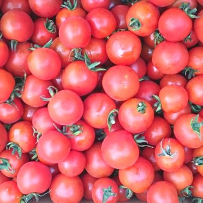 ミニトマト  150g