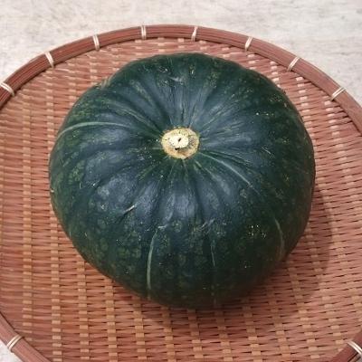 南瓜 かぼちゃ 1玉(1.5kg〜)