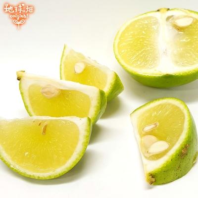 和風レモン