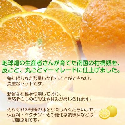 有機柑橘マーマレード3種セット