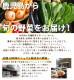 有機野菜セット 5品目