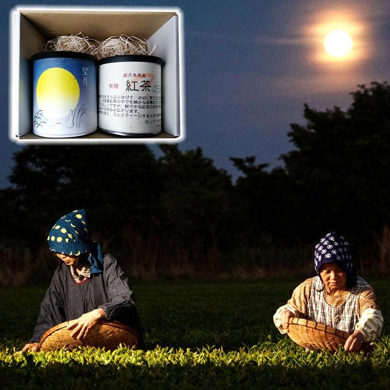 ねじめ茶寮 有機紅茶3種セット