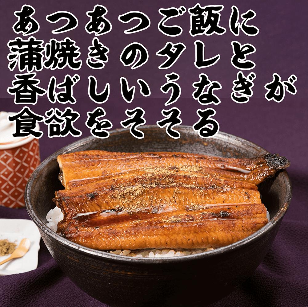 <鹿児島県産> 国産うなぎ蒲焼【送料無料】