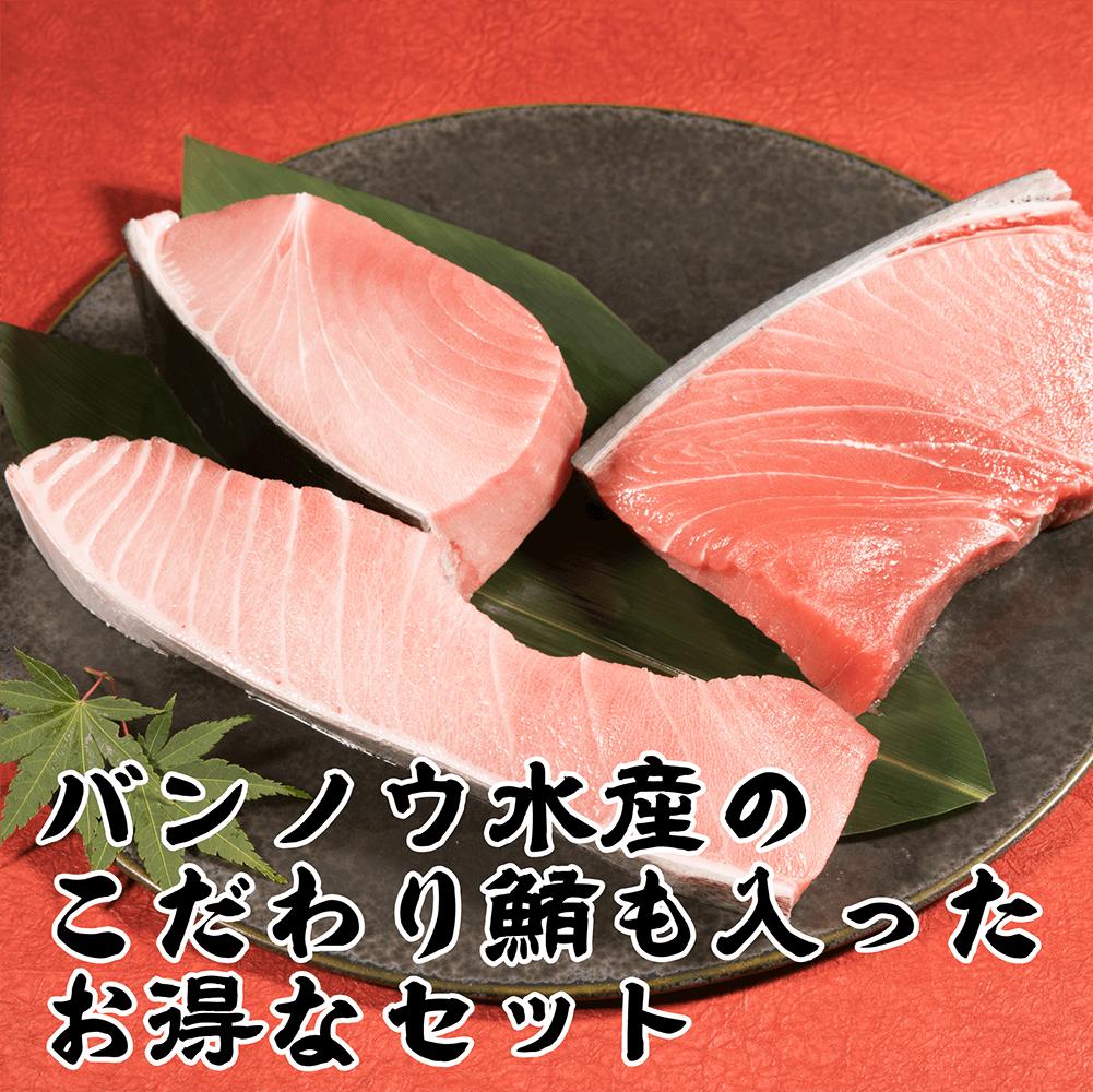 <大満足>「かっぱ寿司」 特選詰め合わせ【送料無料】