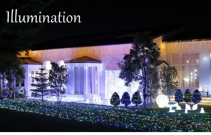 イルミネーション 室内用 LED20球 緑コード 白&青 (SHG20WB) コントローラー付 1.9m