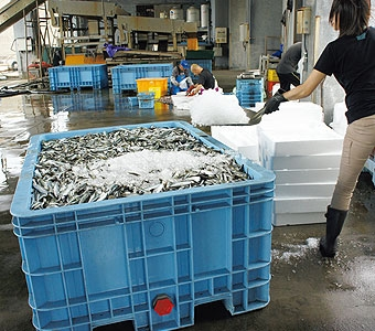 貯水ジャンボックス 500L 【法人様限定商品】