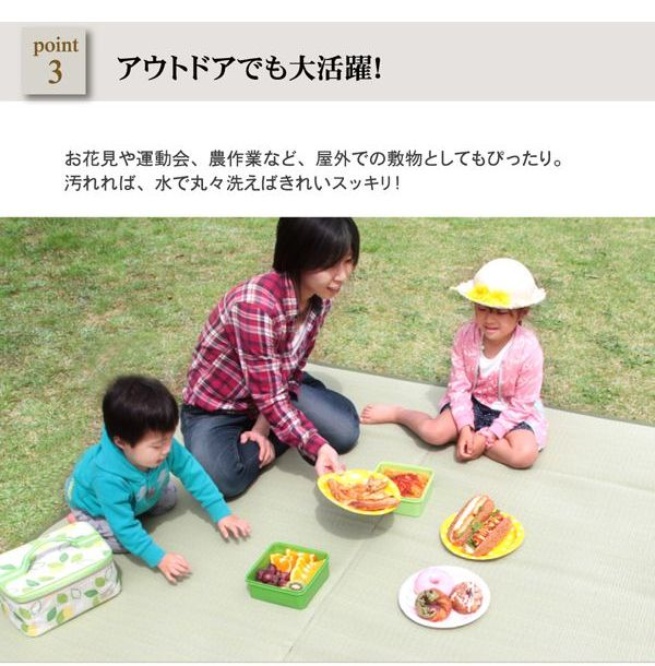 ラグ 五木 江戸間4.5畳 (約261×261cm) い草風 PPカーペット 洗える 日本製 2103004
