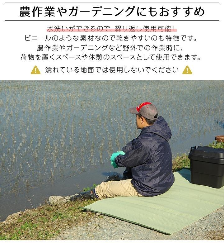 ラグ ファーム い草風 江戸間6畳 261×352cm 2112206 2113606 PPカーペット レジャーシート 日本製
