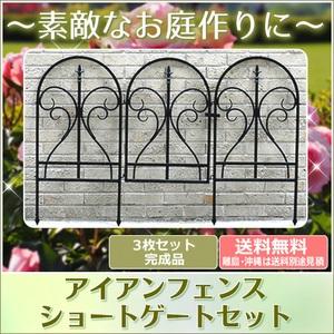 アイアンフェンス フィニアル ゲートセット ブラック イージーフェンス トレリス 黒 IPN-7031G ※北海道+1100円