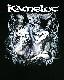【在庫有り商品】KAMELOT -キャメロット- POETRY FOR THE POISONED 「ポエトリー・フォー・ザ・ポイズンド」 2010年ツアー Tシャツ Mサイズ【コレクターズアイテム】