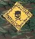【在庫有り商品】DAMAGEPLAN -ダメージプラン- SKULL & CROSS BONES 「スカル・アンド・クロス・ボーンズ」 迷彩 Tシャツ Mサイズ【コレクターズアイテム】