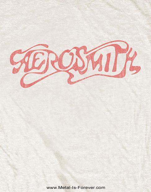 AEROSMITH (エアロスミス) CLASSIC LOGO 「クラシック・ロゴ」 Tシャツ(ナチュラル・カラー)