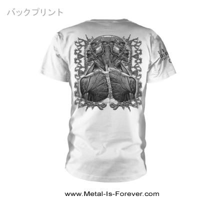 TOOL -トゥール- DOUBLE IMAGE 「ダブル・イメージ」 Tシャツ(白)