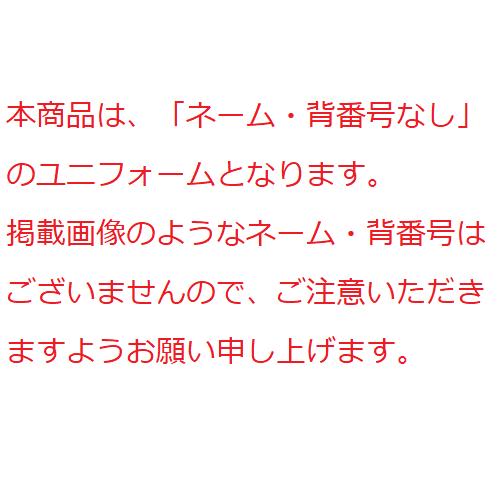 【受注販売】オーセンティックユニホーム ビジター(ネーム・背番号なし)